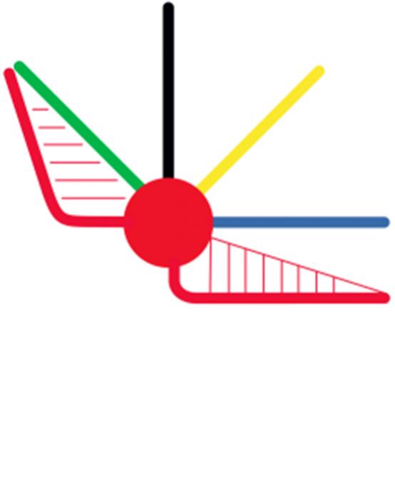 Prinzipien der biomechanischen Okklusion – Modul A