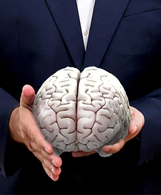 CMD 2 | Neurobiologie von Regulation und Schmerz mit Schwerpunkt Craniomandibuläres System